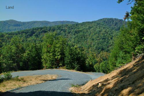 lot-65-poplar-trail-west-v-walnut