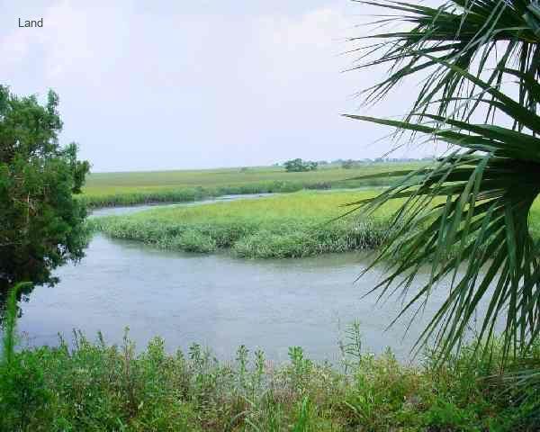 Harbor Island creek